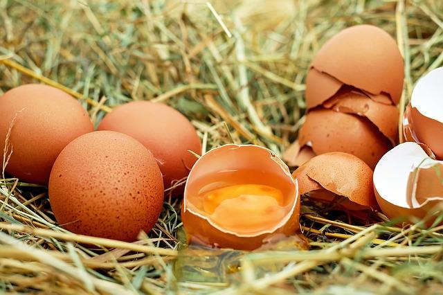 Todo el mundo come huevos